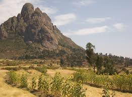 move_to_ethiopia