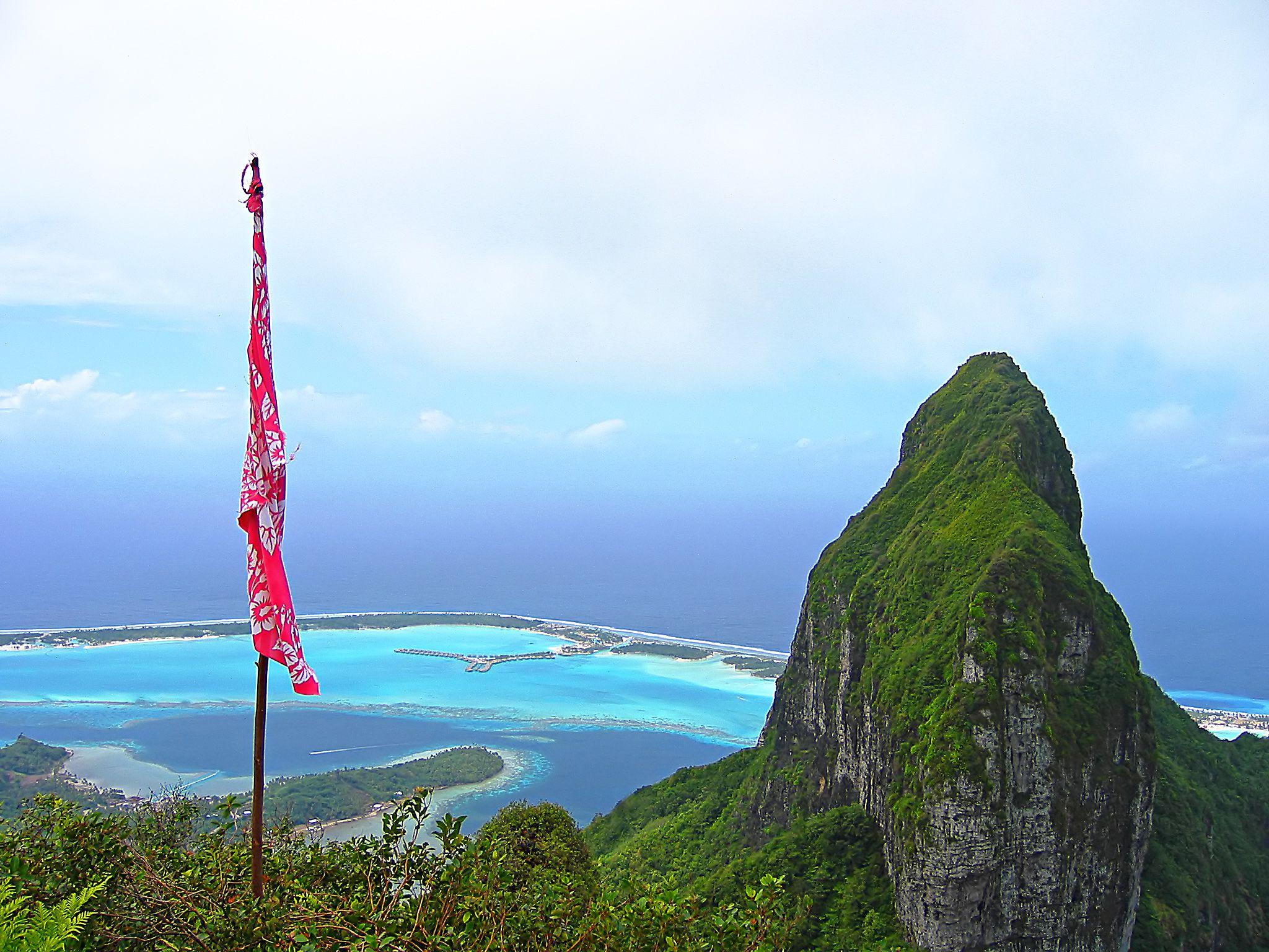 mover_french-polynesia