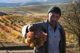 moving_company_tajikistan