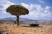 mover_yemen